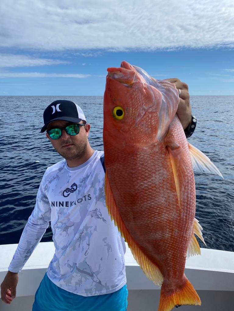 Page detail header image fish species Northern Red Snapper - Lutjanus campechanus