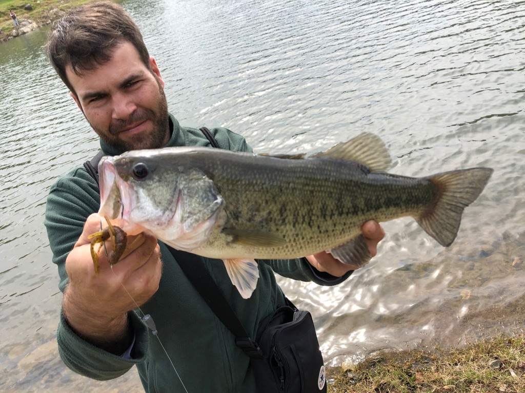 Page detail header image fish species Largemouth Bass - Micropterus salmoides